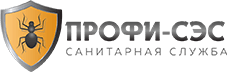 Логотип Профи-сэс