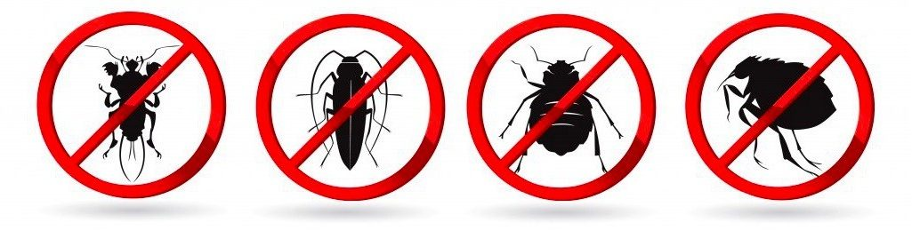 -от-всех-видов-насекомых-в-Москве-с-гарантией-e1549360128819