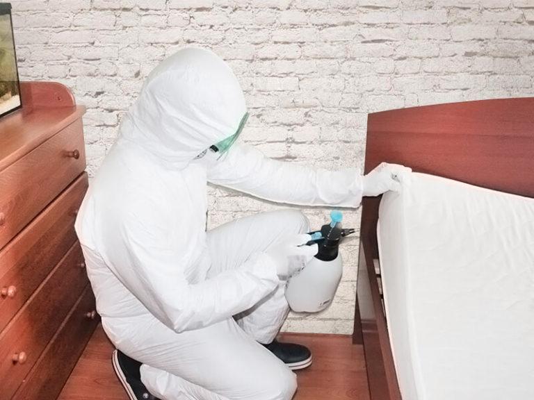 dezinfekciya-ot-klopov-768x576